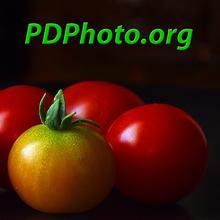 PDPhoto.org